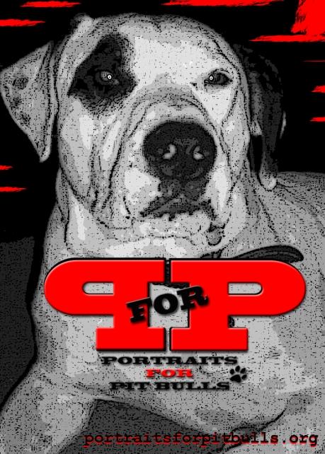 Portraits For Pit Bulls